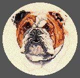 Pegasus Originals Bulldog Counted Cross Stitch Kit Pegasus Originals,http://www.amazon.com/dp/B008PXV4I6/ref=cm_sw_r_pi_dp_eAi4sb1PG2724VW2