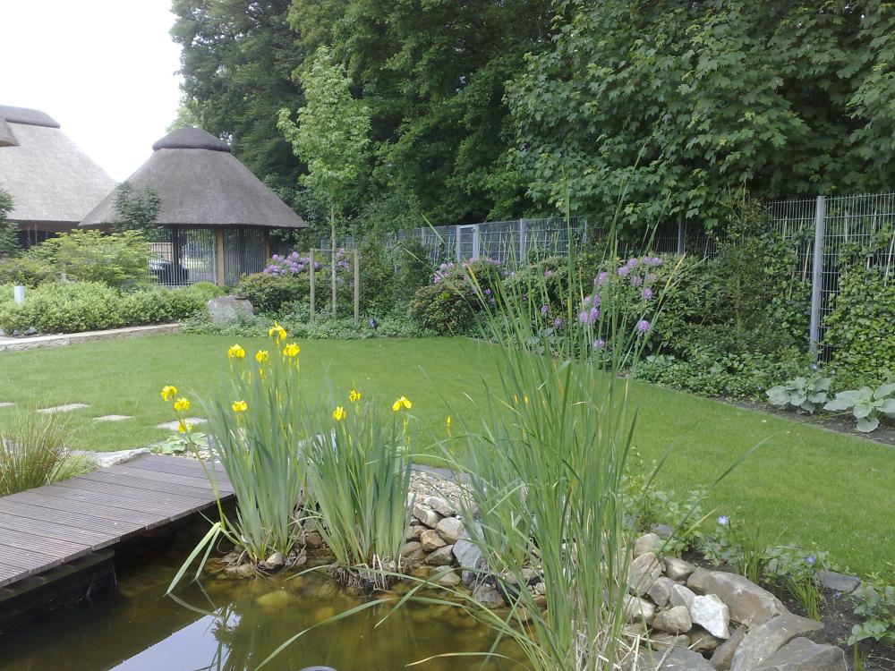 Roring Garten Und Landschaftsbau Gmbh Muensterland De Plants