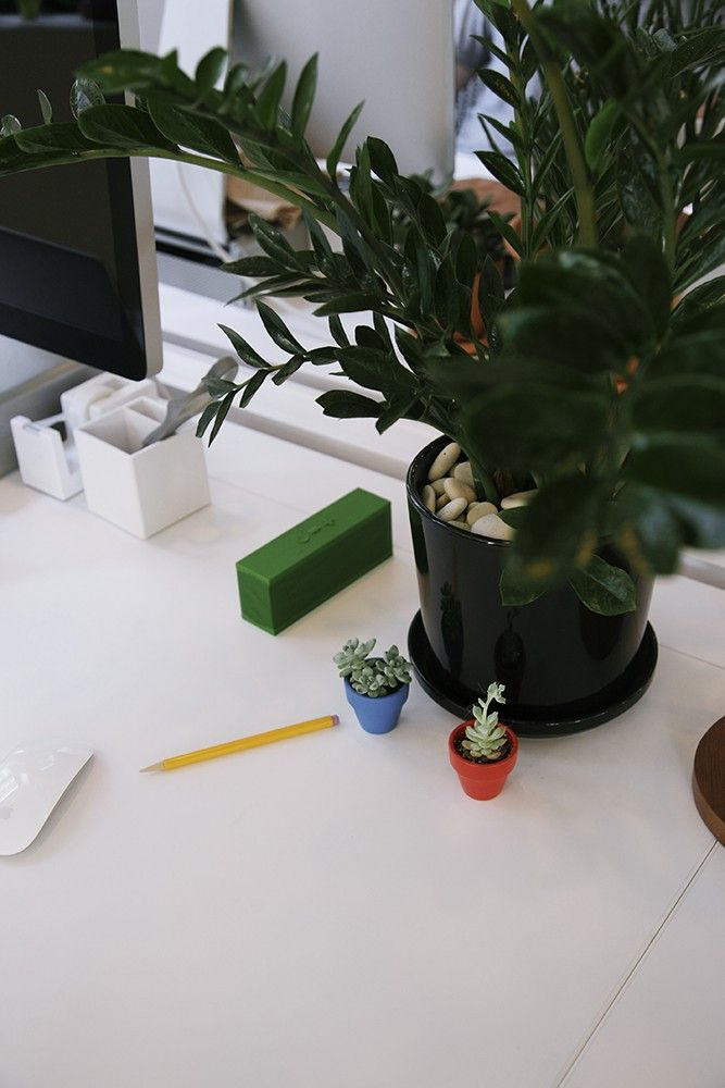 small plants for office. Ask The Expert: 10 Tips For Office Plants, From Sill - Gardenista Small Plants