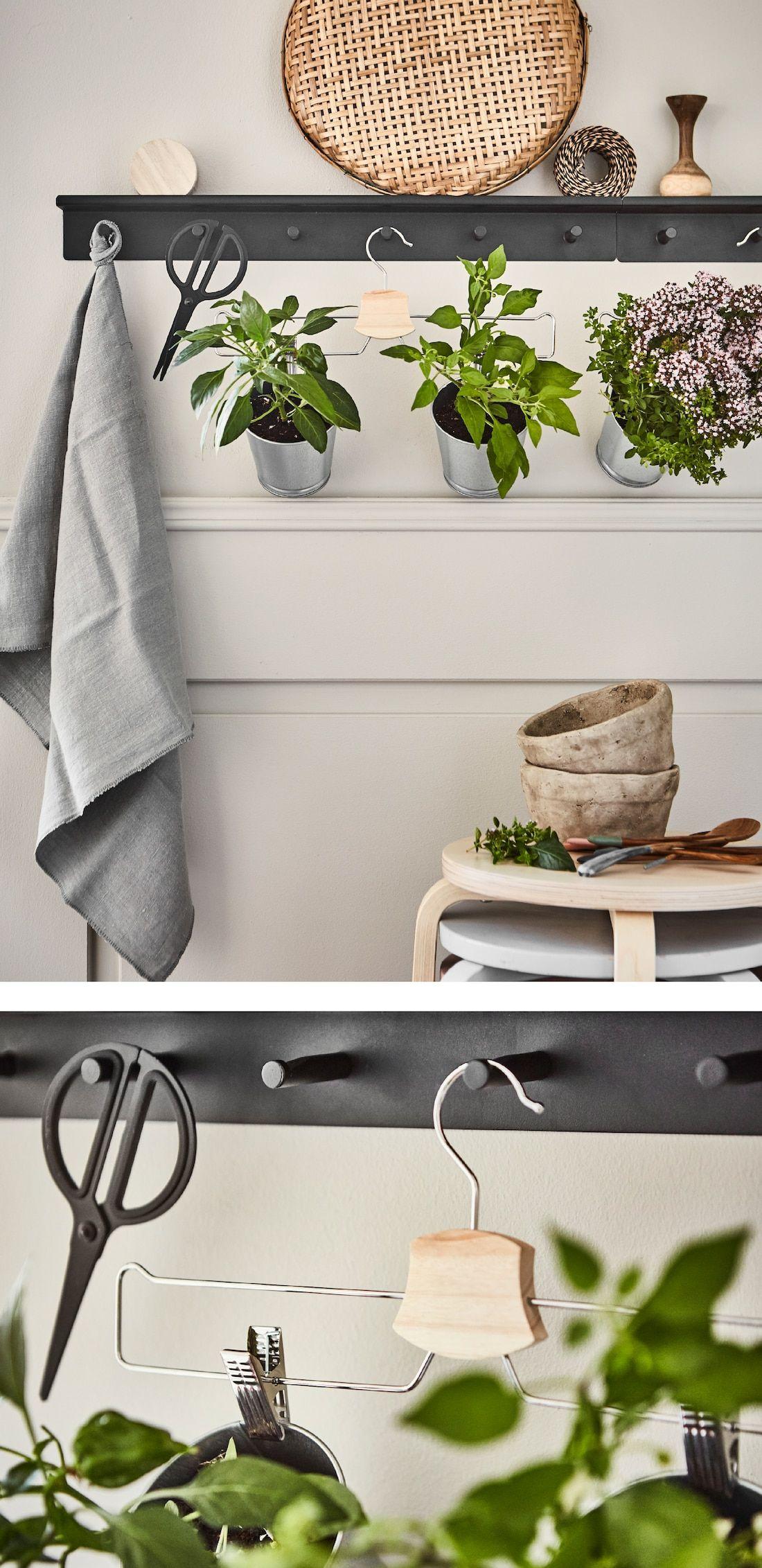 Du suchst nach innovativen Ideen für deinen Küchengarten