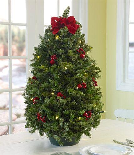 Ll Bean Christmas Trees.Traditional Balsam Tabletop Tree Prelit Holiday