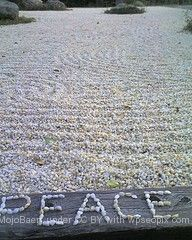 June 6th World Peace Day http://transformationenergetics.com/2012/06/june-6th-world-peace-day/