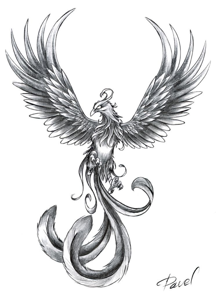 Phoenix Tattoo Idea Maybe With Inscription From The Ashes I Will