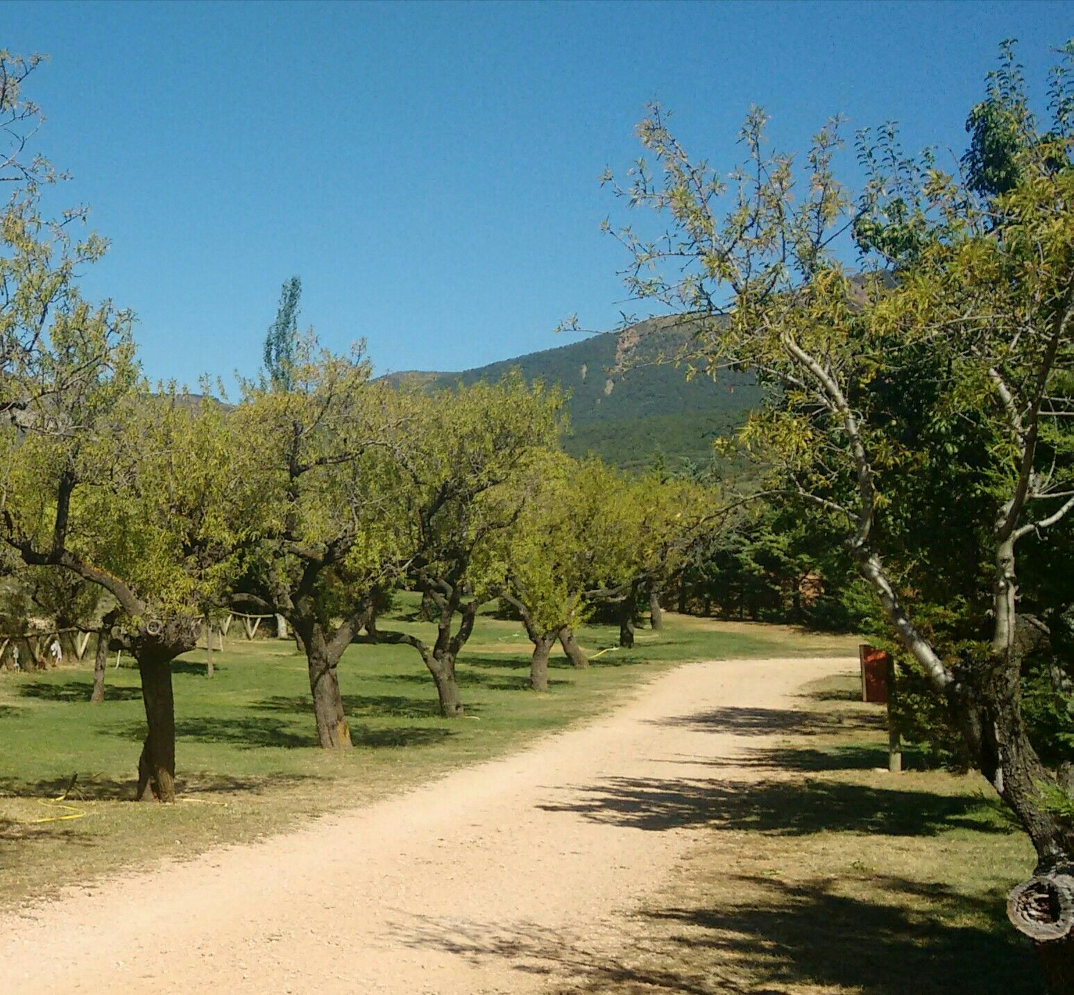 Camping Castillo Loarre Spanje Ook In Het Hoofdseizoen Een Rustige En Aangename Plek Spanje Baskenland Camping