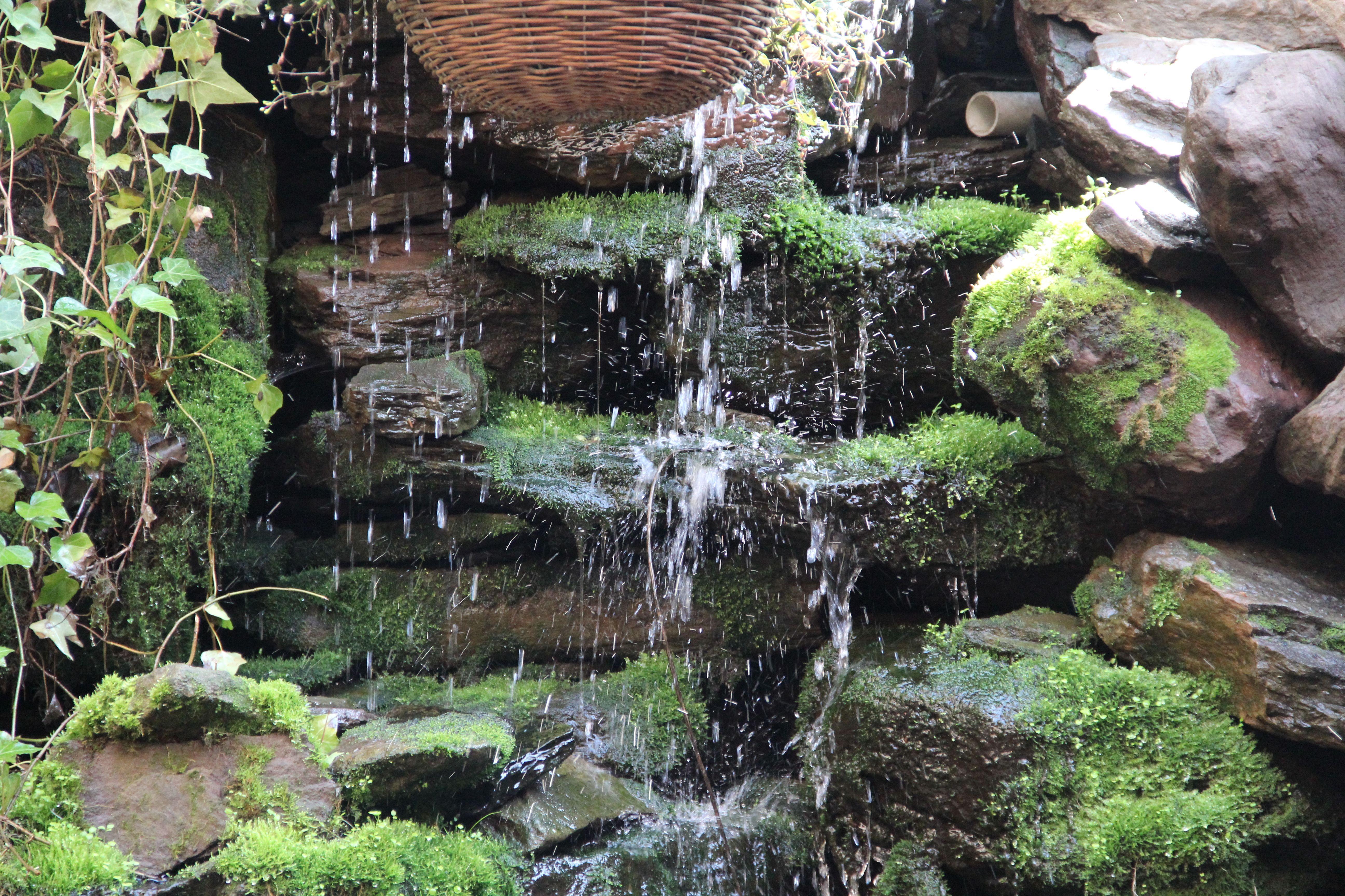 our beautiful backyard waterfall at slide 174 bleecker street
