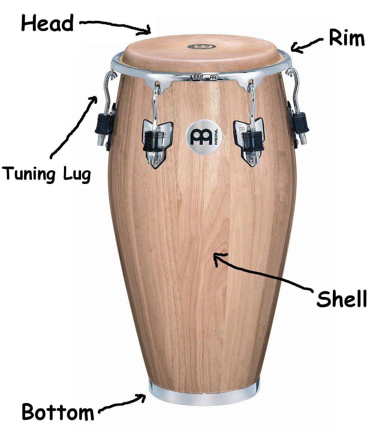 Percussion: Conga Anatomy   Hobbies   Pinterest   Congas ...