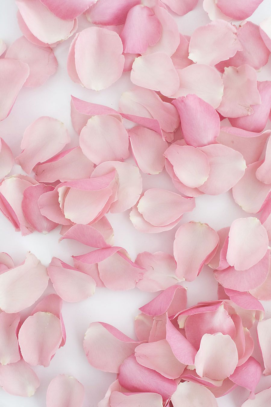 Diy Rose Petal Garland Backdrop Pink Wallpaper Cute Pink Background