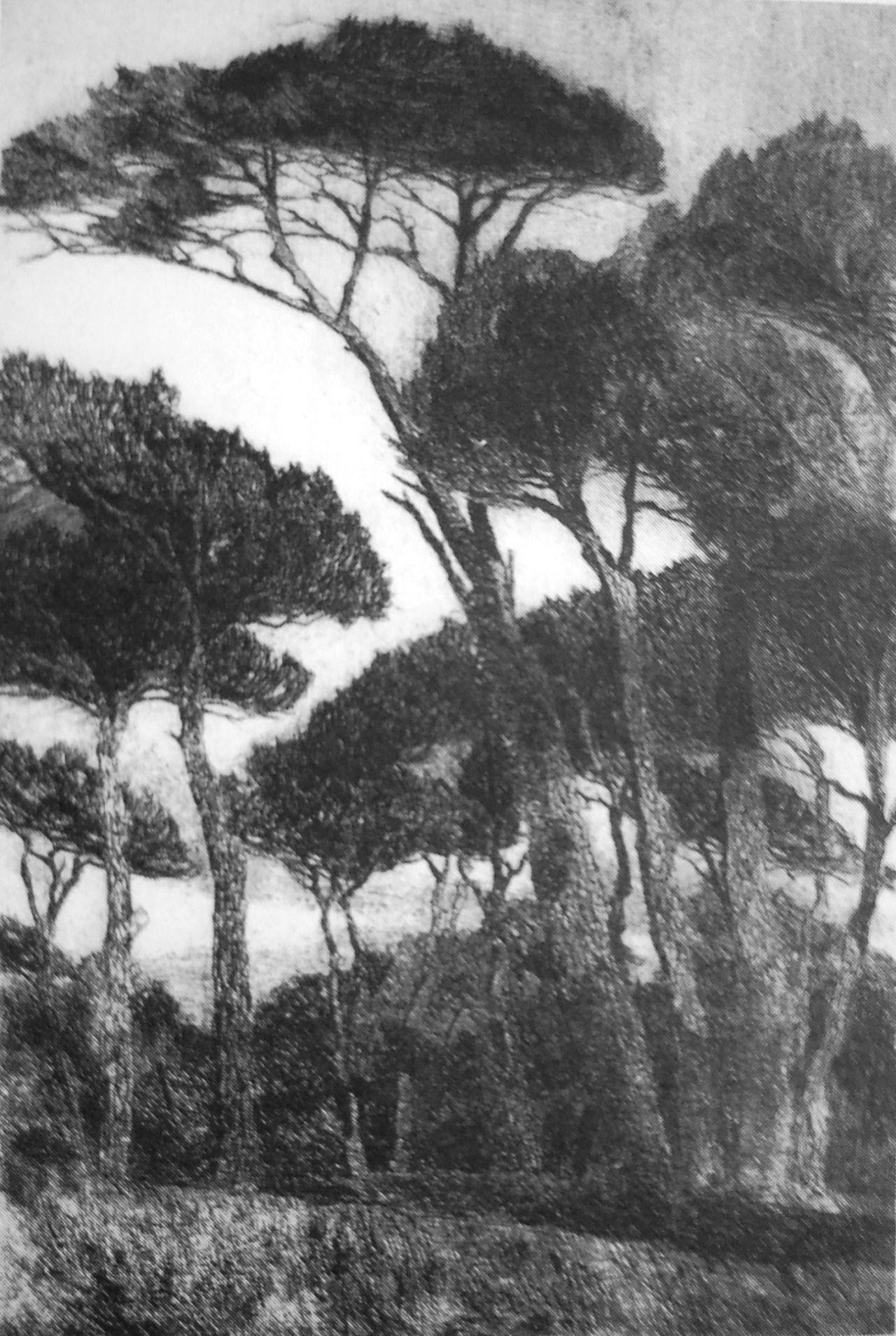 Max Roeder, Castel Fusano, 1915. Acquaforte e puntasecca