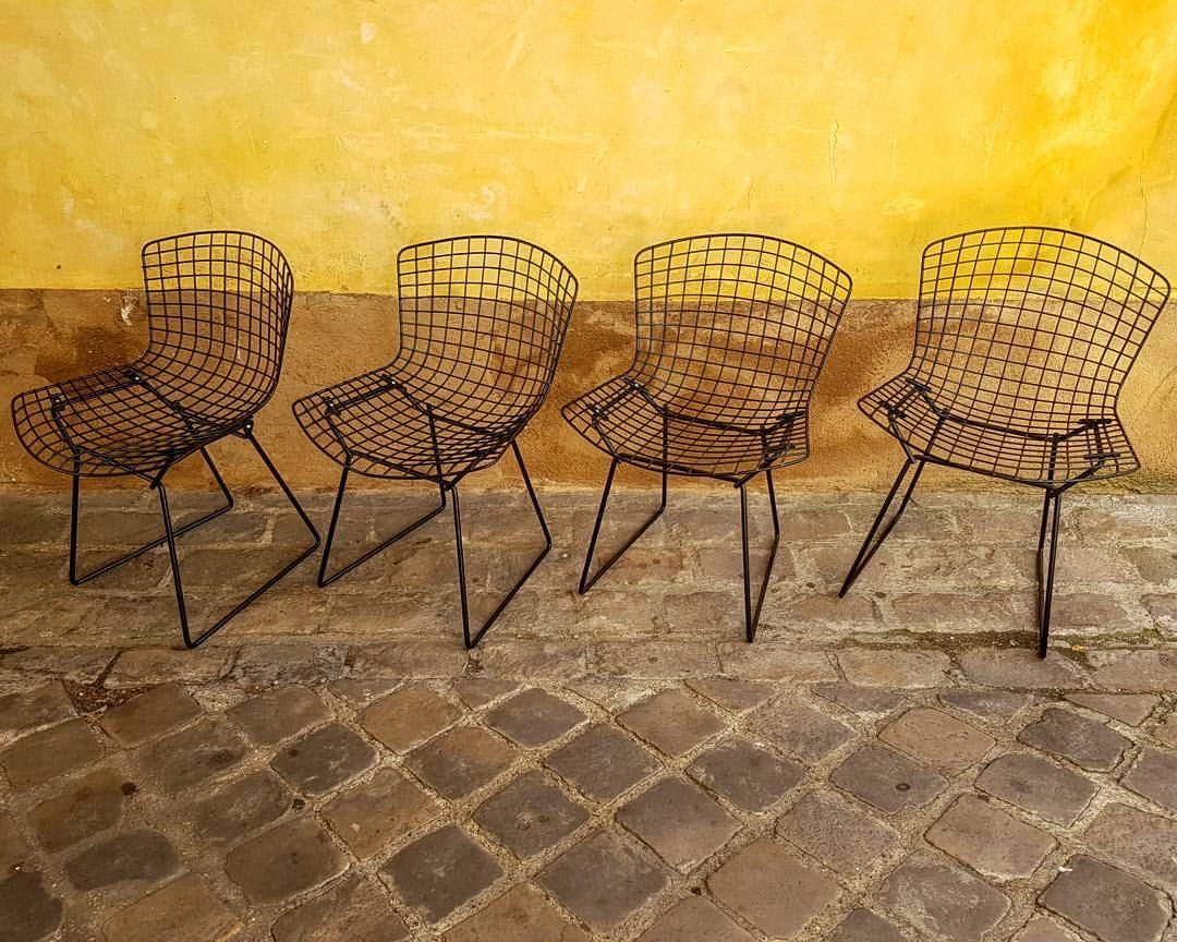 Knoll Sedie ~ 347 best wire images on pinterest arm chairs armchairs and chair