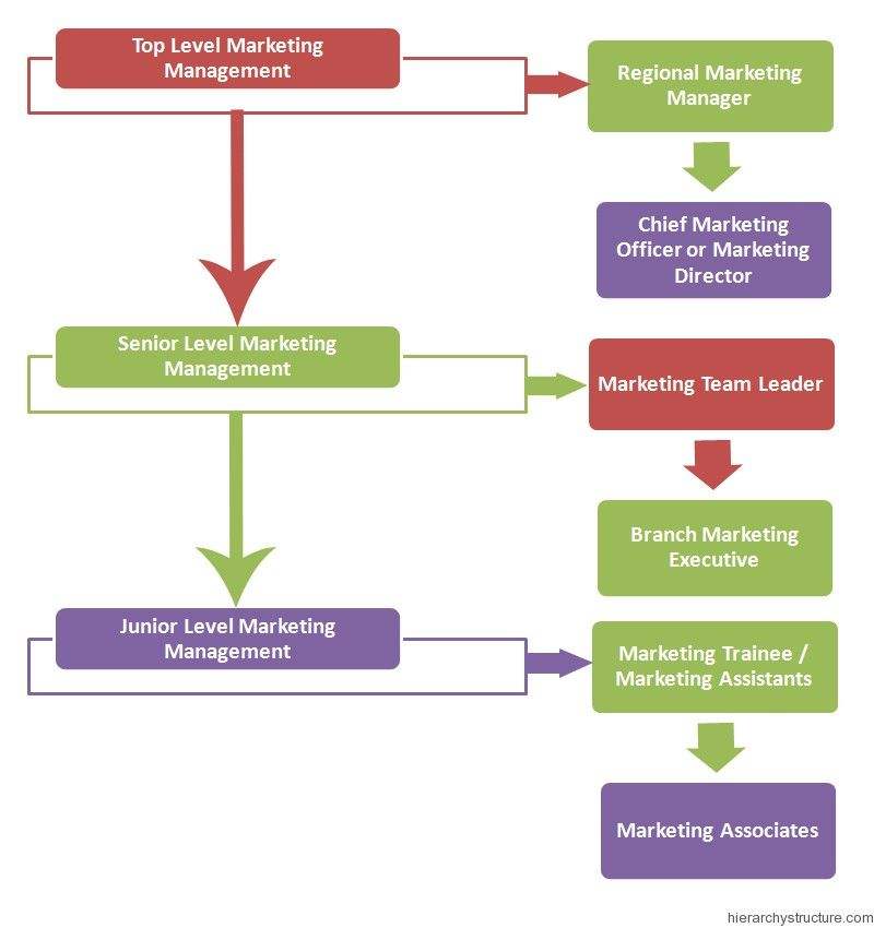Marketing Management Hierarchy  Management Hierarchy