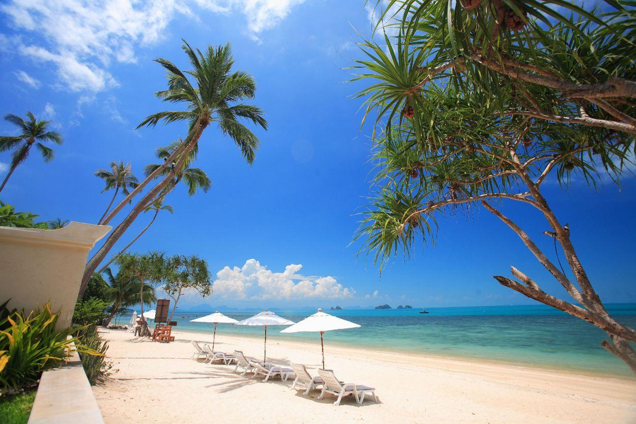 Sunset Beach Resort Koh Samui Choose A Place For Relax Samui Beach Sunset Beach Resort Thailand Beach Resorts