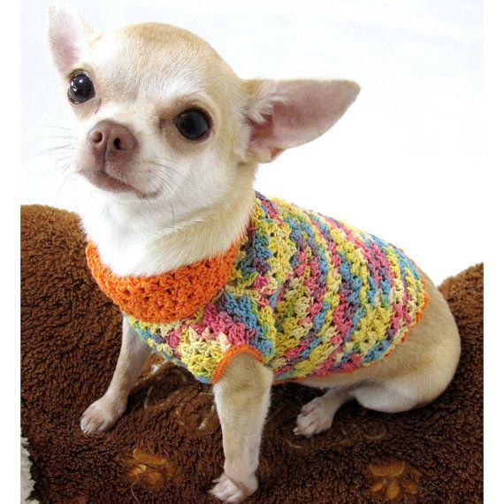 Orange Colorful Dog Clothing Cotton Chihuahua Clothes by myknitt #myknitt #chihuahua #dog #pet #cutedog #cutechihuahua #teacupdog #designerdog #fashiondog #celebritydog #petboutique #handmade #crochet #knit