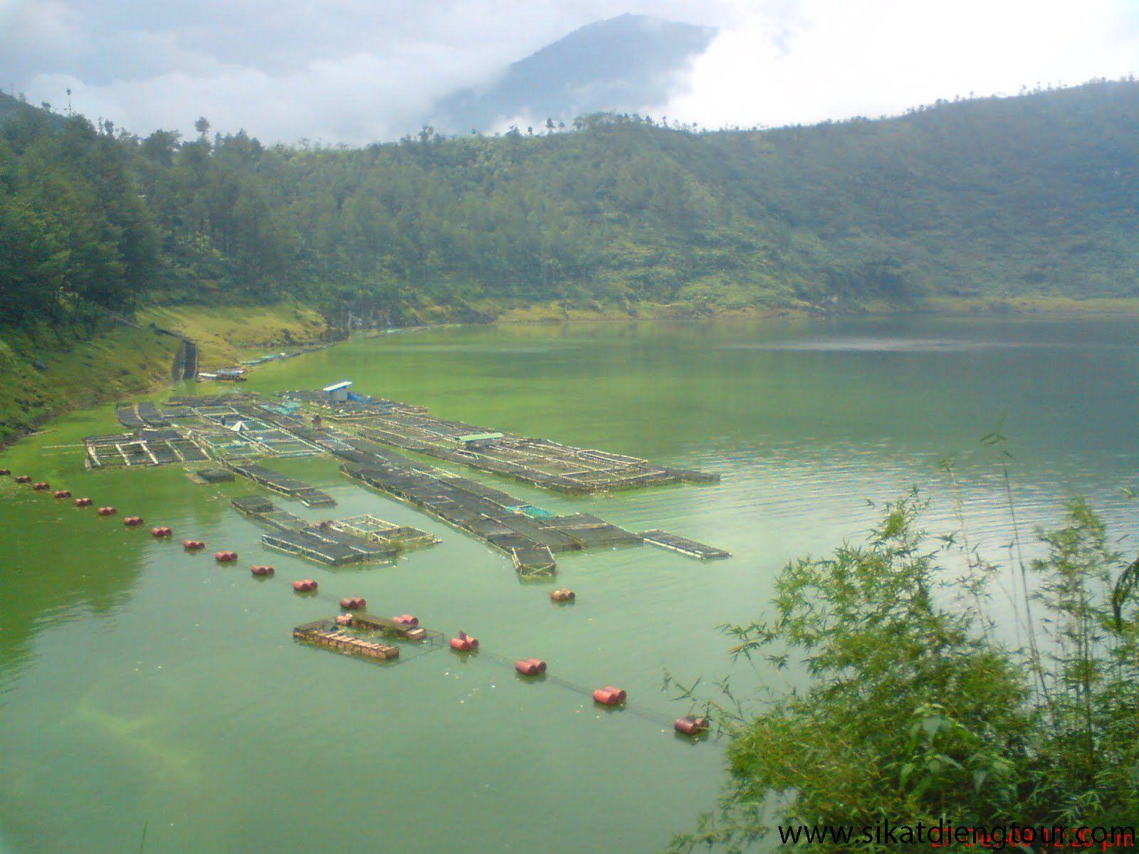 Telaga Menjer Terletak Di Desa Maron Kecamatan Garung Kabupaten