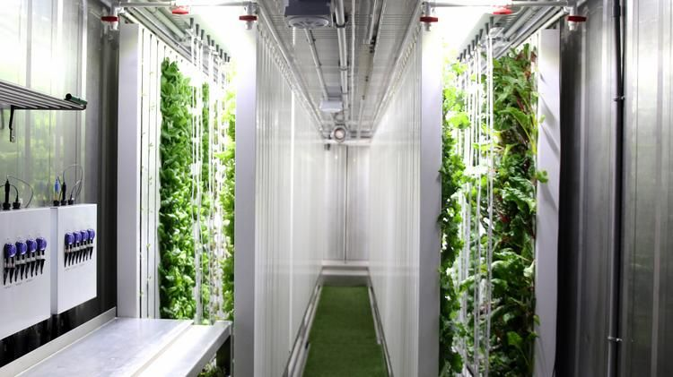 Federal Realty bringing hydroponic shipping containers to ...
