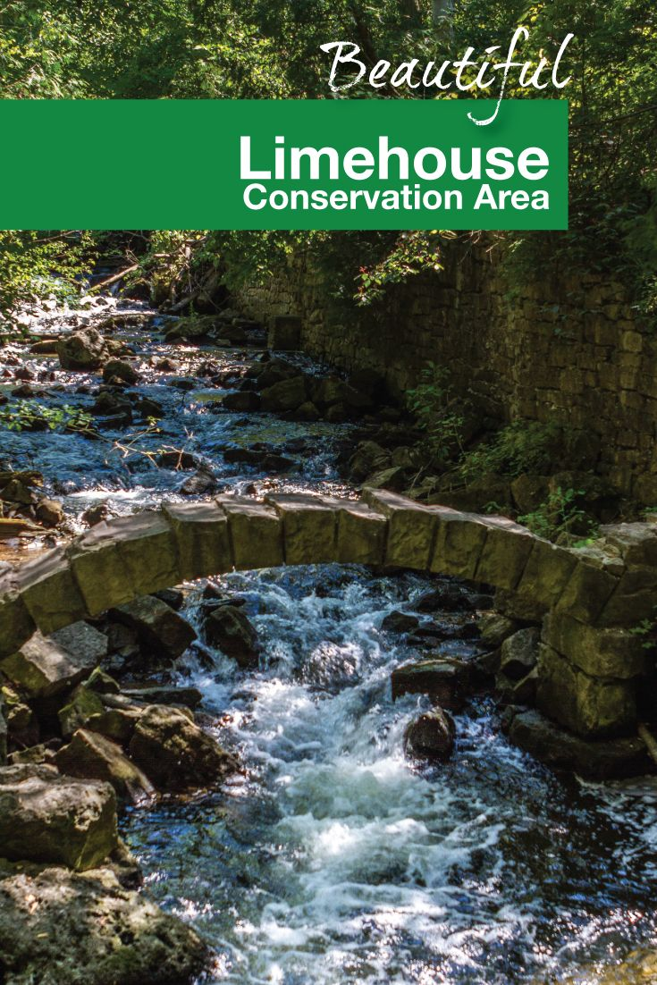 Exploring The Kilns And Crevasses Of Limehouse Conservation Area - 6 scenic hikes in halton hills