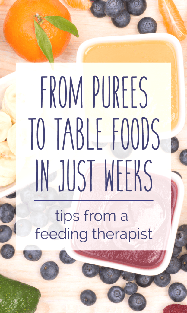 Perfect for parents who feel nervous or hesitant about Baby Led Weaning Learn how to progress quickly through purees encourage baby feeding himself and safely get your ba...