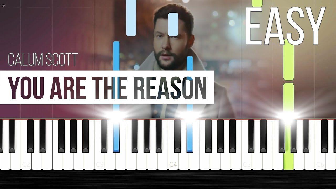 Calum Scott You Are The Reason Easy Piano Tutorial Faradilla