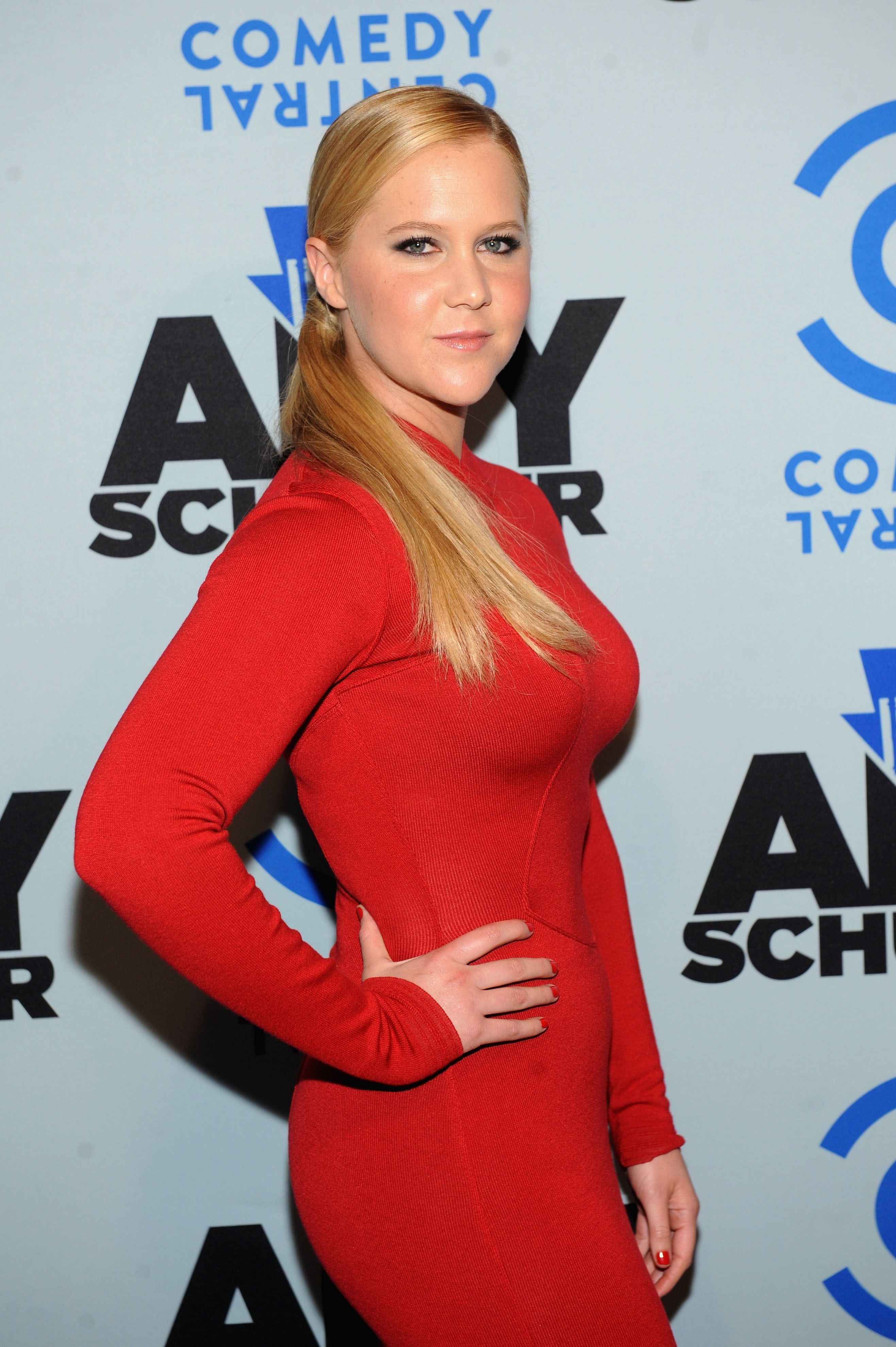 Amy schumer breasts — pic 5