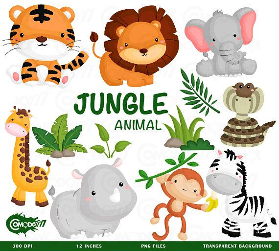 Jungle Animal Clipart Cute Animal Safari Clipart Free Svg On Request Animais Safari Artesanato Em Feltro Festa Africana