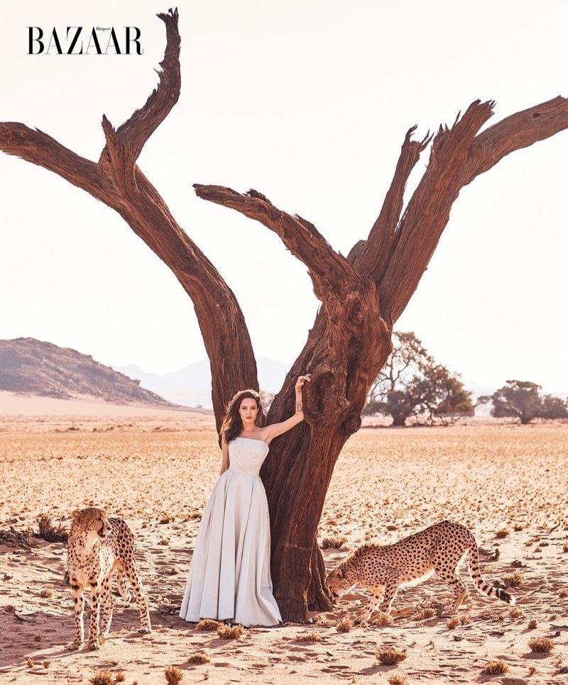 Angelina Jolie Stars In Harpers Bazaar Talks Saving Endangered