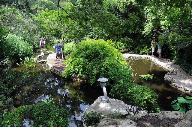 Zilker Botanic Garden Austin Texas Flowers Plants Trees Dsc 3467