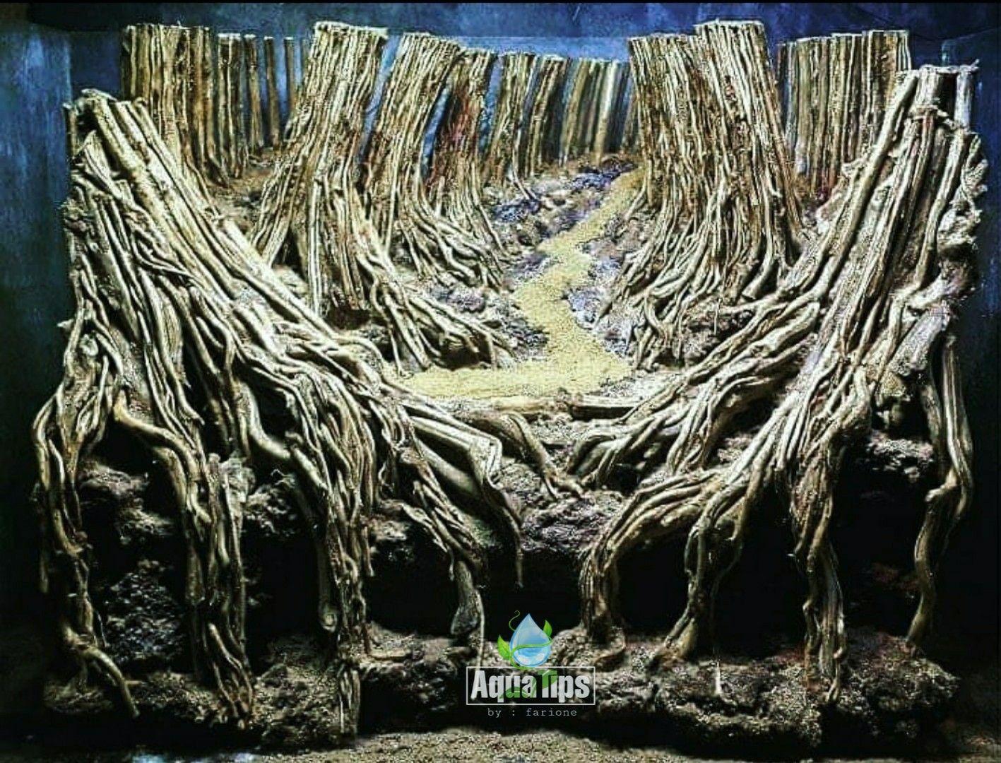 Bonsai Aquascape Akar Senggani - AKARKUA
