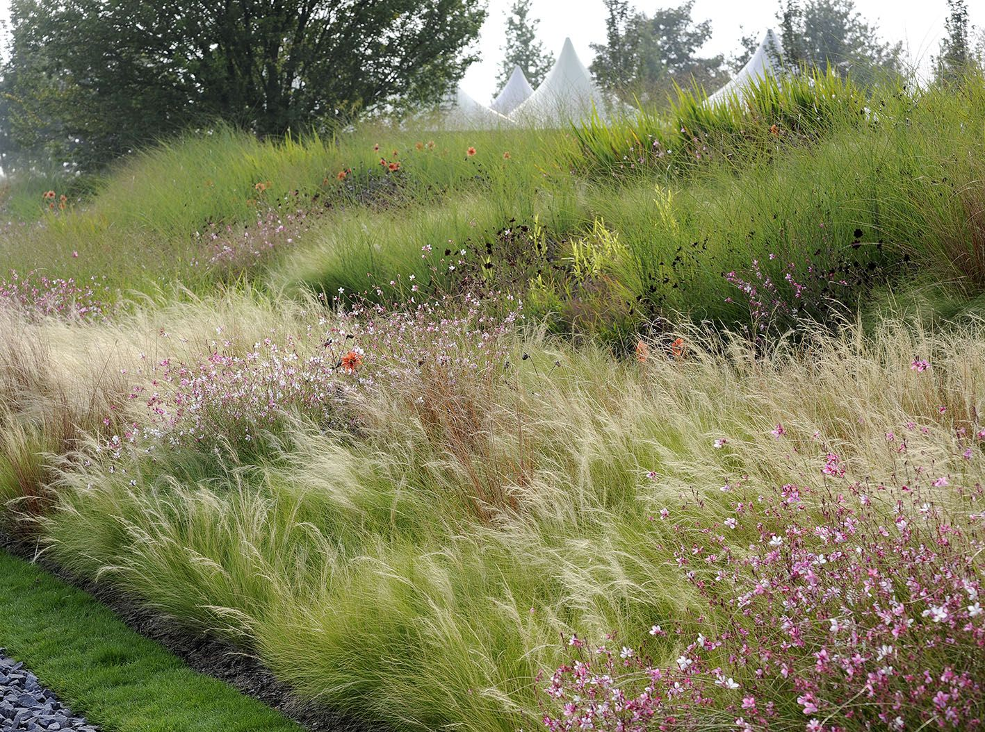Gartenplanung peter janke gartenkonzepte hauseingang for Peter janke design mit pflanzen