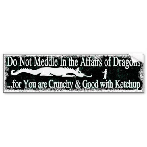 Do Not Meddle In The Affairs Of Dragons Bumper Sticker Bumper