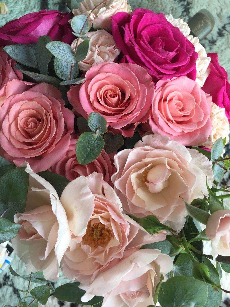 Pin By Nini La Duchesse On Fleurs Plants Rose Flowers
