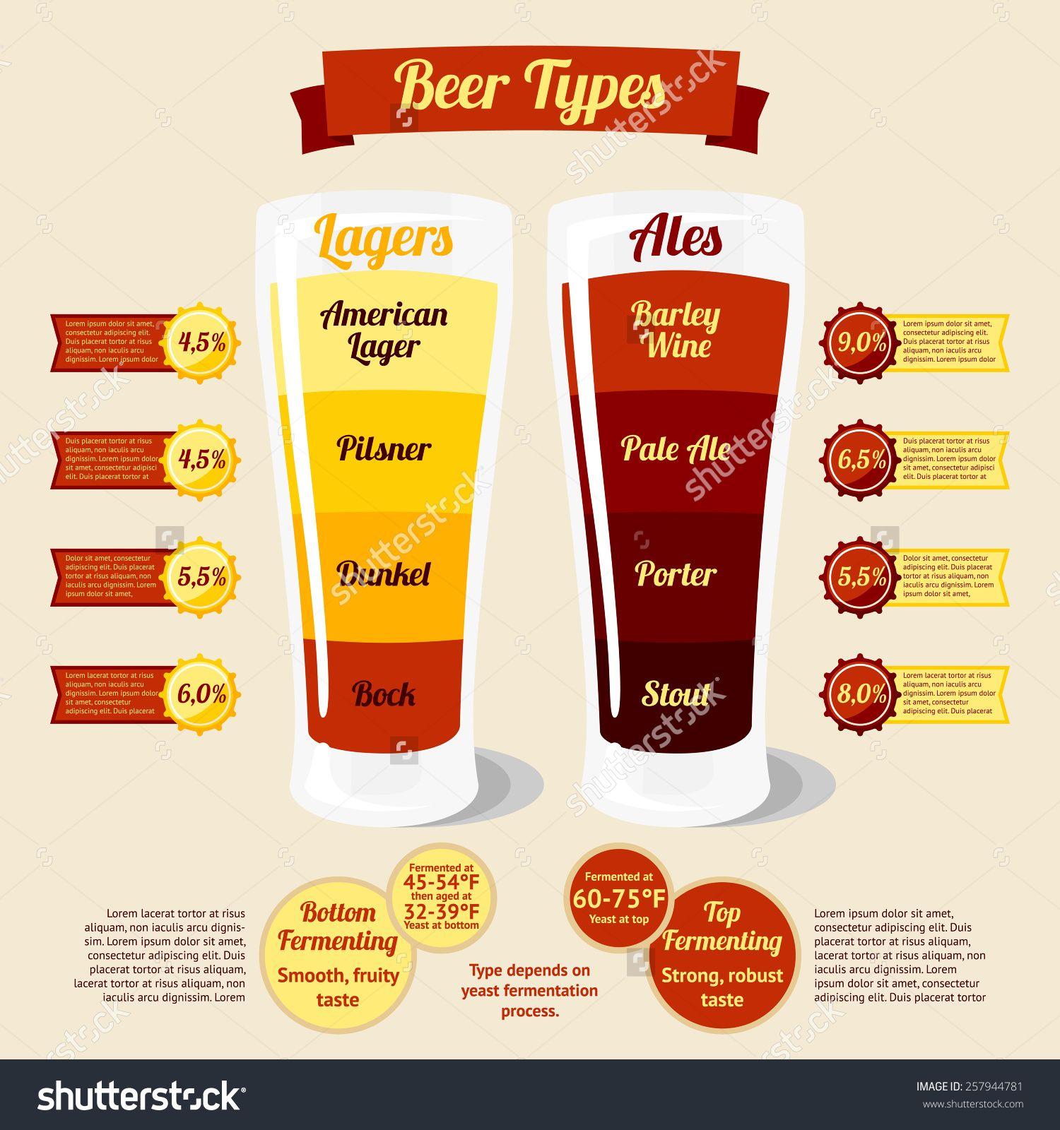 Beer Type Beer Infographic Beer Types Beer Recipes