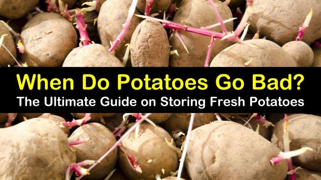 5 Ways To Tell If Potatoes Are Spoiled Potatoes How To Store Potatoes Canned Potatoes