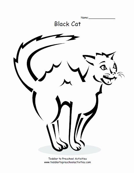 Black Cat Coloring Page Inspirational 17 Best Images About ...