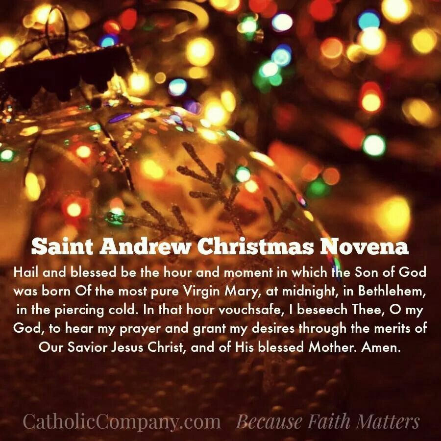Pray 15 times a day through Advent till Christmas