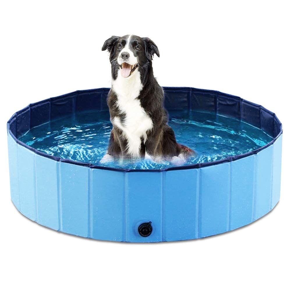 Jasonwell Foldable Dog Pet Bath Pool Review Dog Training Advice Tips Dog Pool Dog Swimming Dog Swimming Pools