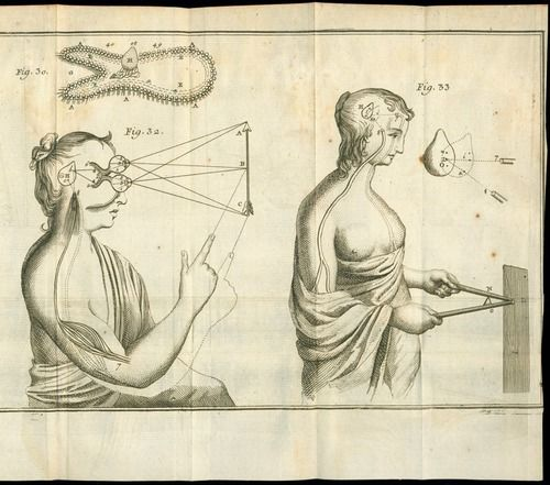The Pineal Gland Sketch By Descartes Skizzierung