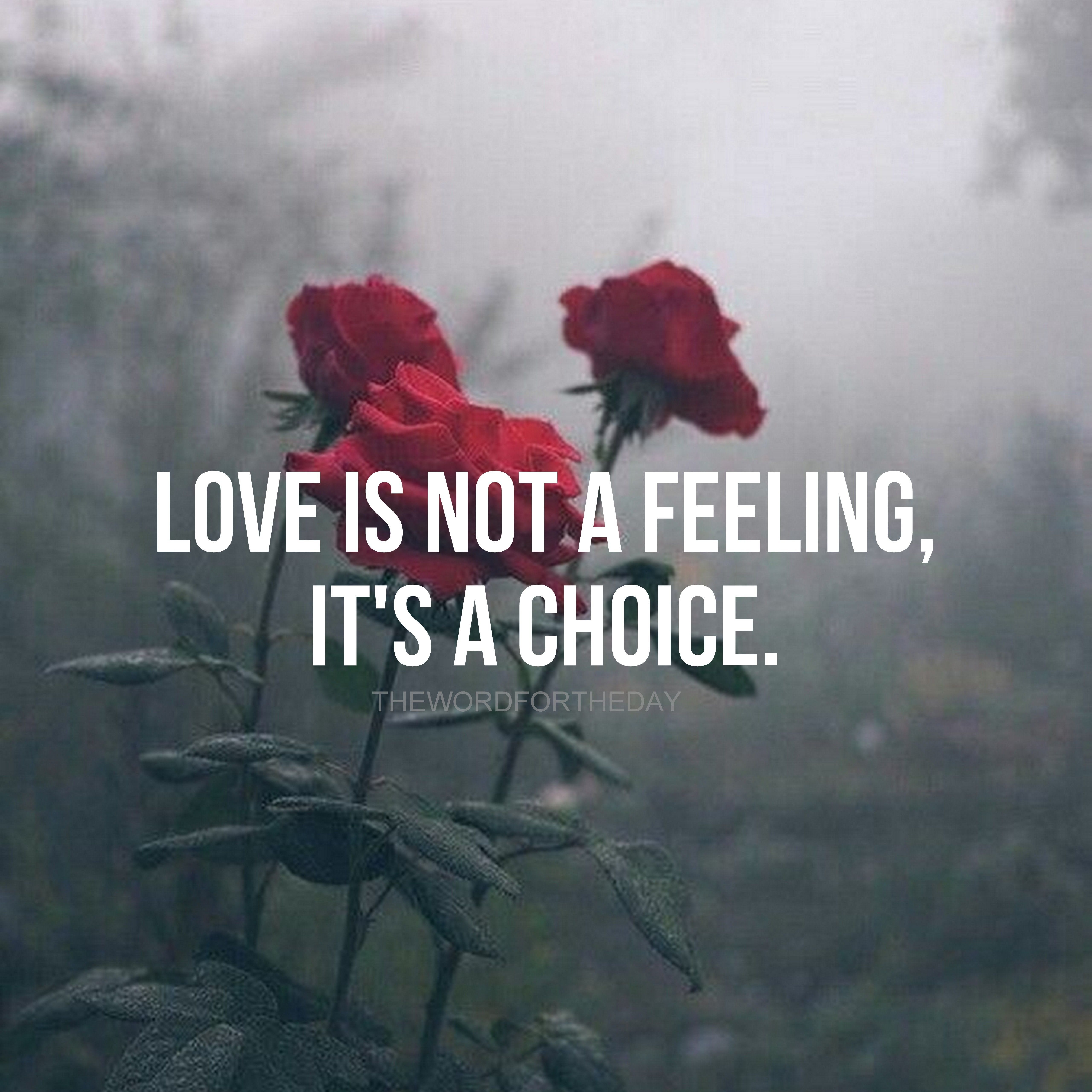 Red Roses Love Quotes God Is Love Love Bible Verse Christian Quotes Inspiration The Word For The Day Qu Music Quotes Funny Christian Love Quotes Music Quotes