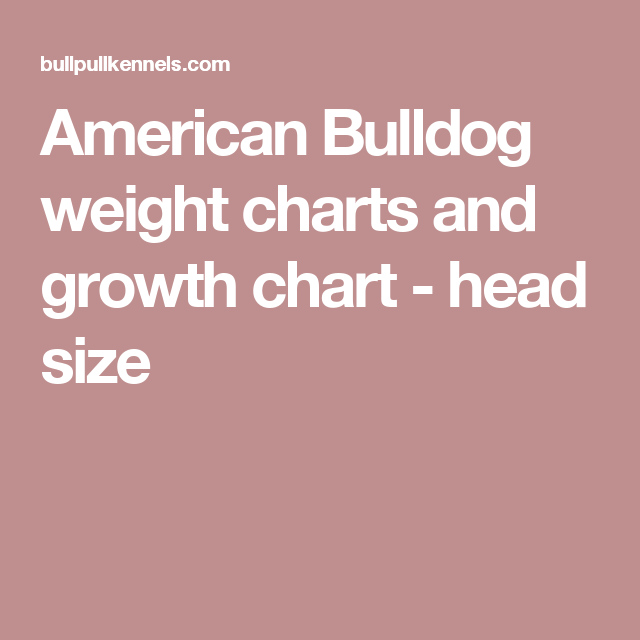 American Bulldog Weight Charts And Growth Chart Head Size American Bulldog Weight Charts Growth Chart