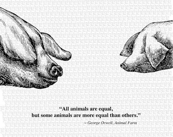 Animal Farm Quotes Awesome From Animal Farmgeorge Orwell Quotesquotesgram  Ideas And