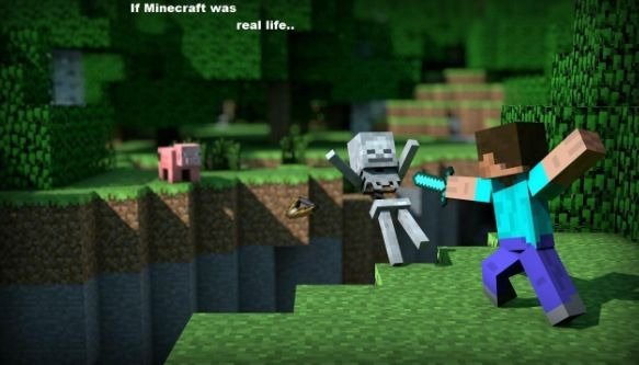 If minecraft was real...