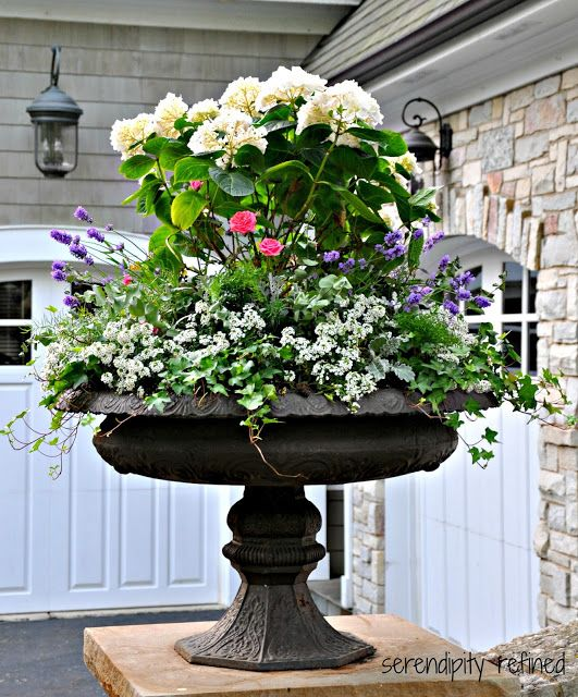Building a dream house front porch container gardens urn planters urn and pink purple - Large container gardening ...