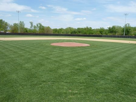 Page Template 1 Field Field Of Dreams Grass
