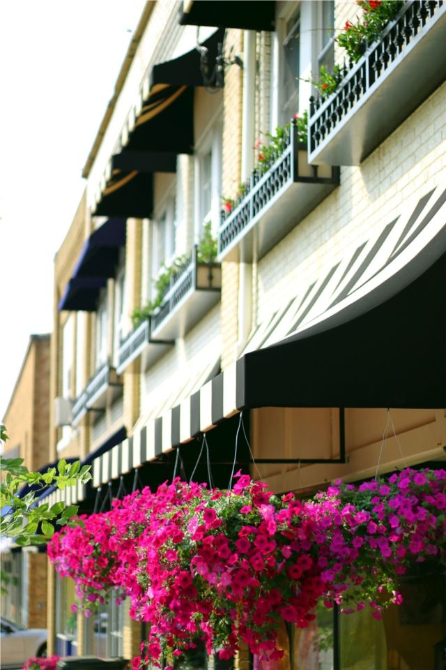 Black And White Striped Awning Fuchsia Flowers Love House Awnings Curb Appeal Exterior