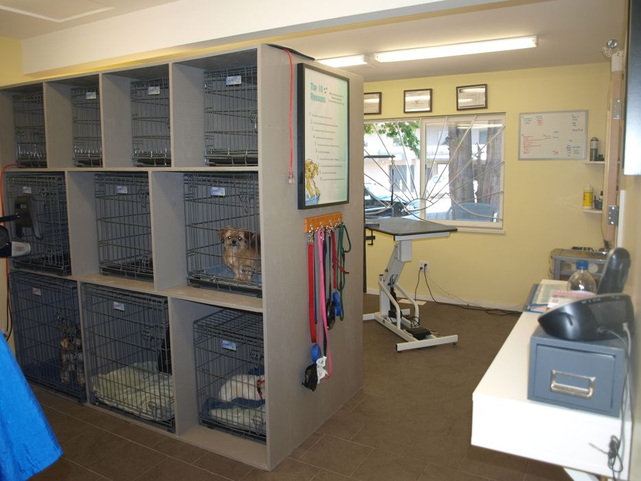 Repinned grooming shop layout grooming shop grooming for Dog grooming salon floor plans