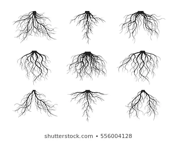 Trees With Roots Images Stock Photos Vectors Shutterstock Tree Roots Tattoo Roots Tattoo Tree With Roots Drawing