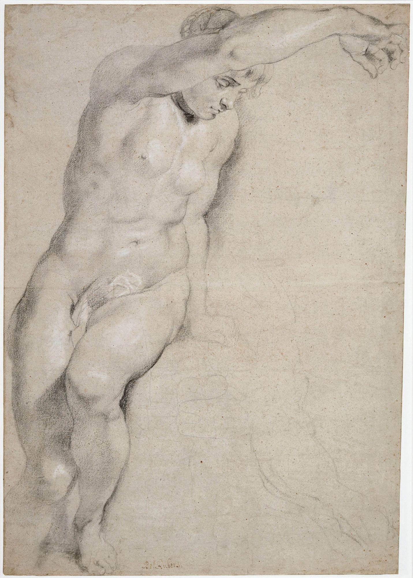 Peter Paul Rubens Drawings | draw | Pinterest | Anatomía, Dibujo y ...