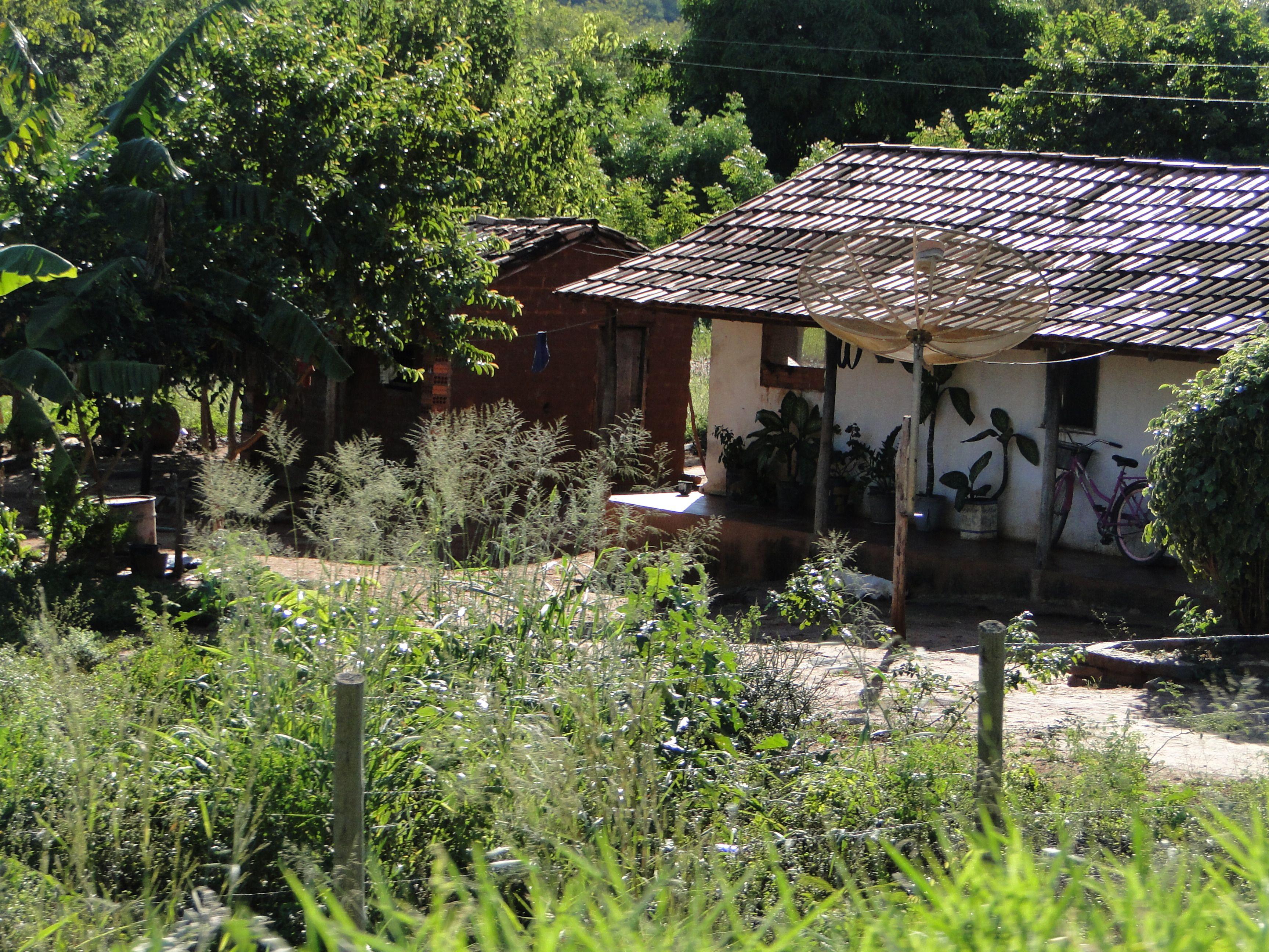 Tocantins- Januária- Minas Gerais-Brasil