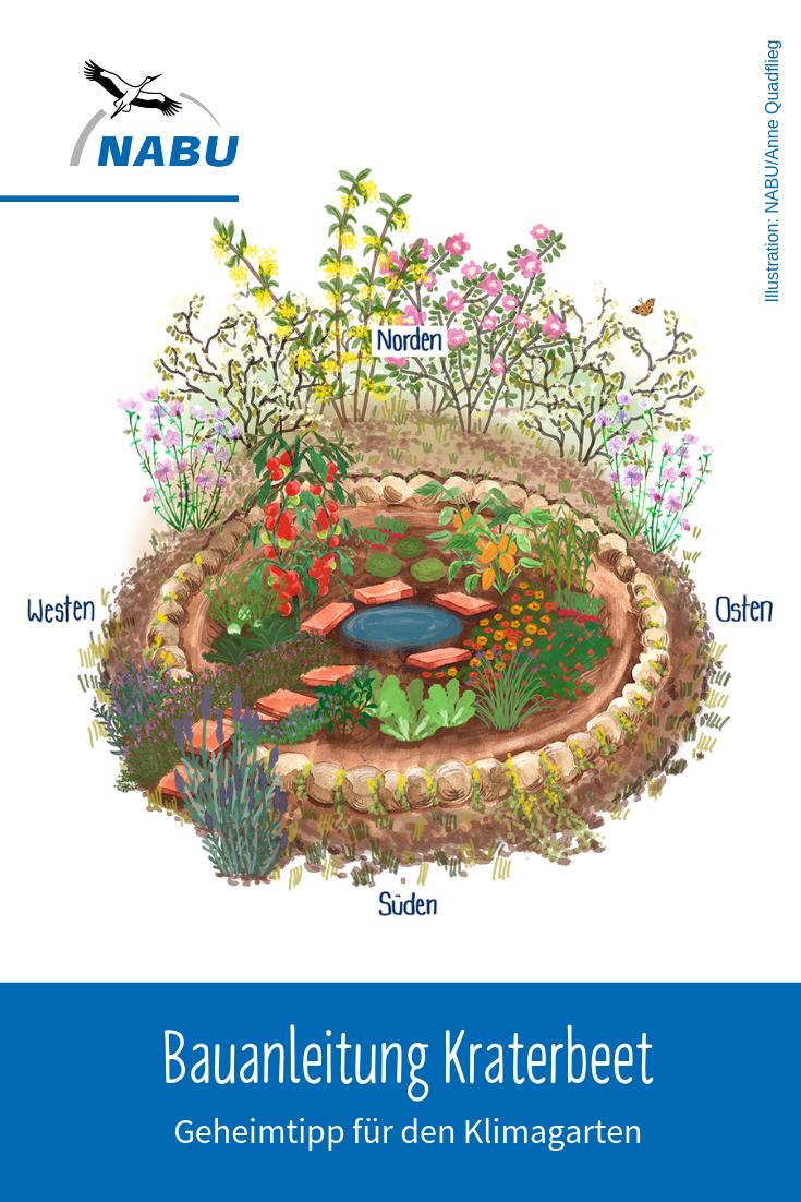 Ein Kraterbeet Fur Den Klima Garten Nabu Garten Landschaftsgartner Garten Bepflanzen
