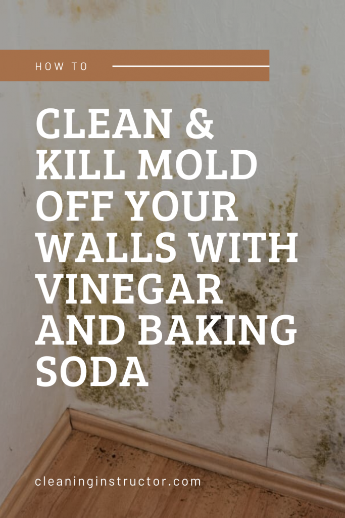 How To Clean Kill Mold Off Your Walls With Vinegar And Baking Soda In 2020 Mold In Bathroom Cleaning Molding
