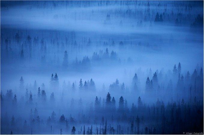 Lusen, Bayerischer Wald