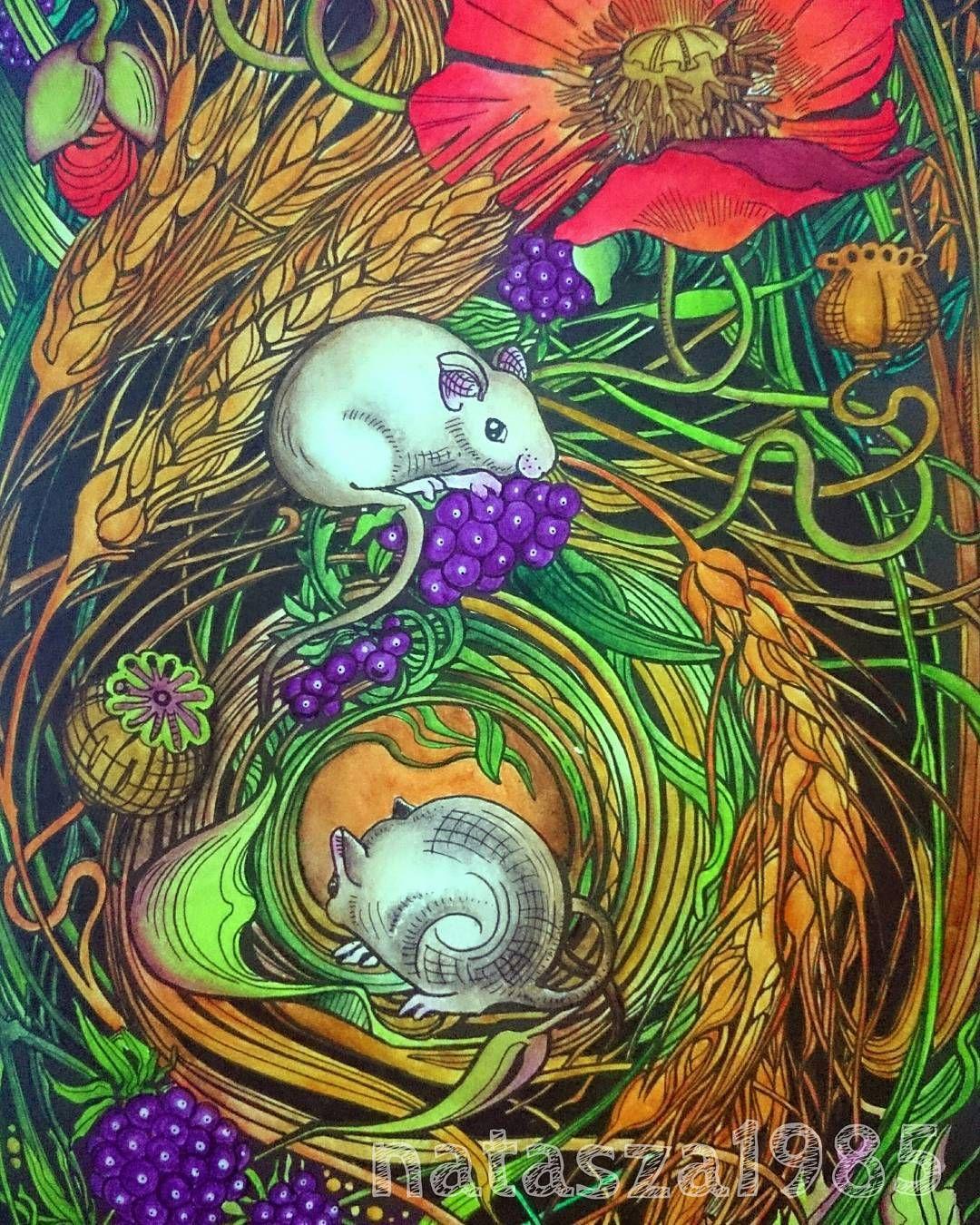 pin on manic botanic